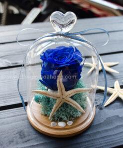 Quà tặng hoa hồng xanh cho người yêu
