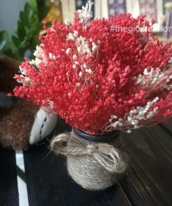 Bình Broom Bloom khô HK0001