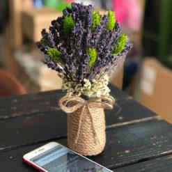 Bình hoa lavender - oải hương khô phalaris xanh lá