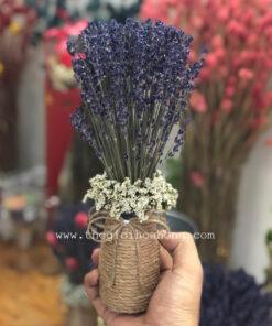 Lọ hoa oải hương, lavender - Tình yêu nhỏ