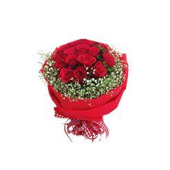 Bó hoa hồng đỏ - Đắm Say
