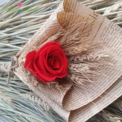 Mộc mạc - Hoa hồng đỏ vĩnh cửu