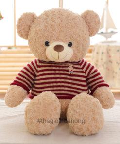 Gấu bông Teddy áo len Cafe sữa