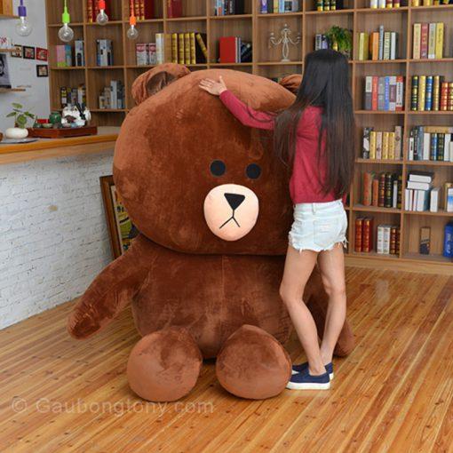 Gấu brown size lớn