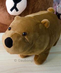 Gấu nâu Ice bear – We Bare Bear