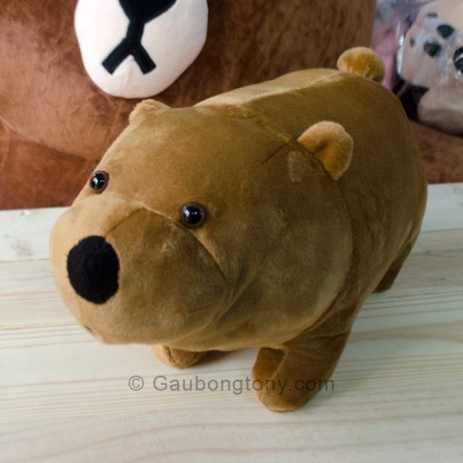 Gấu nâu Ice bear – We Bare Bear