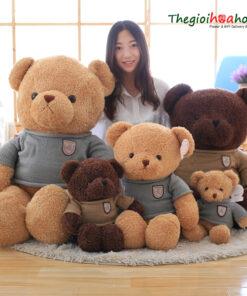 Gấu Teddy Head and Tales