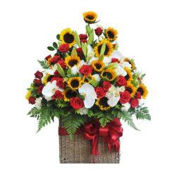 Giỏ hoa tươi - Tình Yêu To Bự