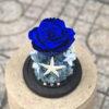Hoa hồng Xanh Biển Và Em - BLU03