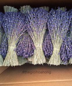 Bó hoa lavender khô