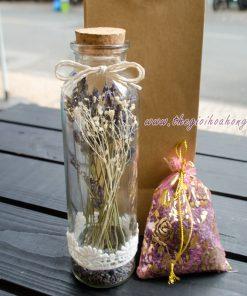 Lọ hoa lavender khô Pháp