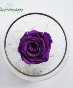 Lọ thủy tinh hoa hồng tím
