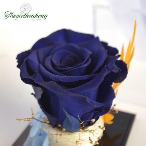 Love Box - Hoa hồng Xanh Magic