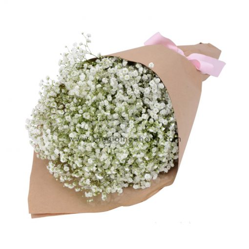 Bó hoa baby - Tình yêu thuần khiết