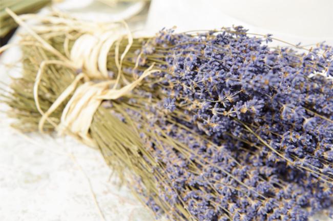 Cách bảo quản hoa oải hương, hoa lavender khô