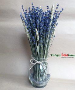 Bình hoa lavender nồng nàn