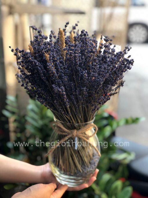 Bình hoa lavender - Oải hương khô nồng nàn