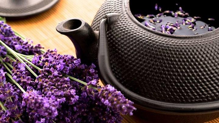 Những lợi ích và tác dụng phụ của trà hoa oải hương bạn cần biết