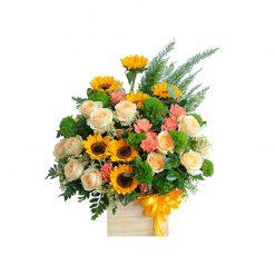 Hộp hoa tươi HT0098