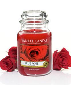 Nến Hũ True Rose - Nến thơm yankee hương hoa hồng đỏ