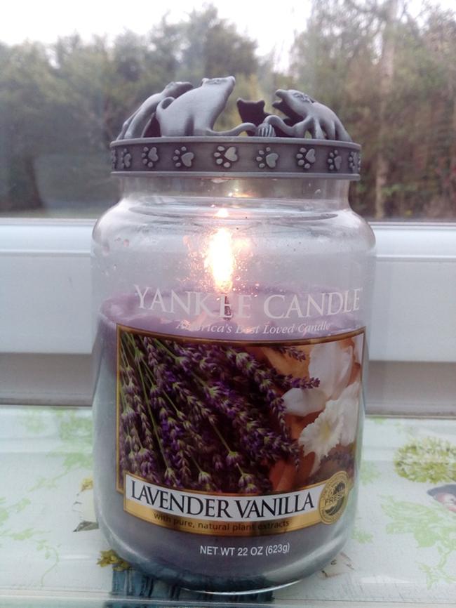 Nến Hũ Lavender Vanilla
