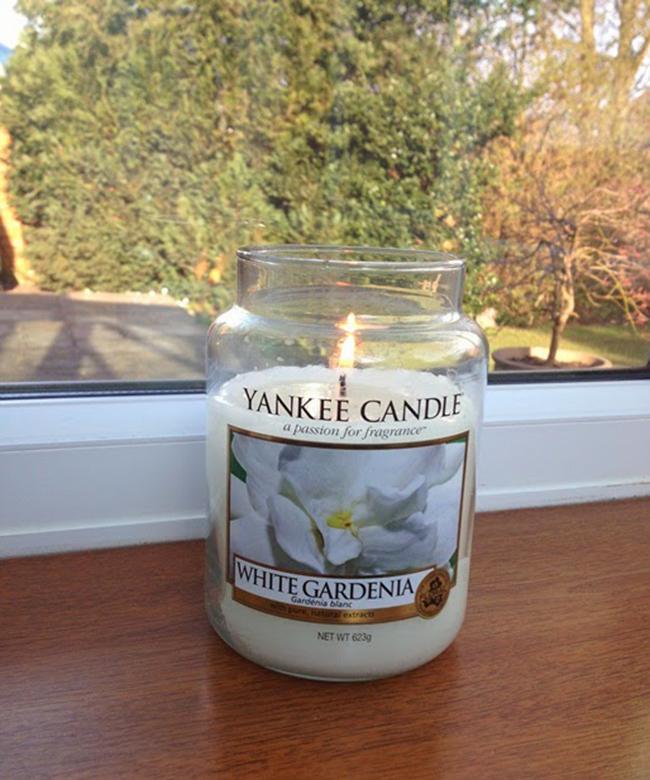 Nến Hũ White Gardenia