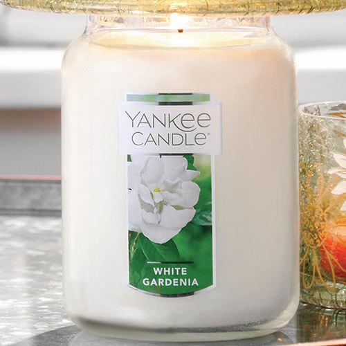 Nến Hũ Yankee Candle White Gardenia