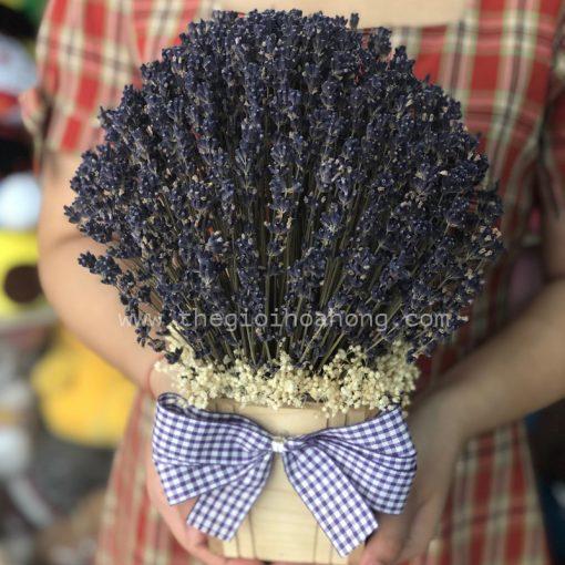 Hộp hoa lavender - Oải hương khô nhập pháp