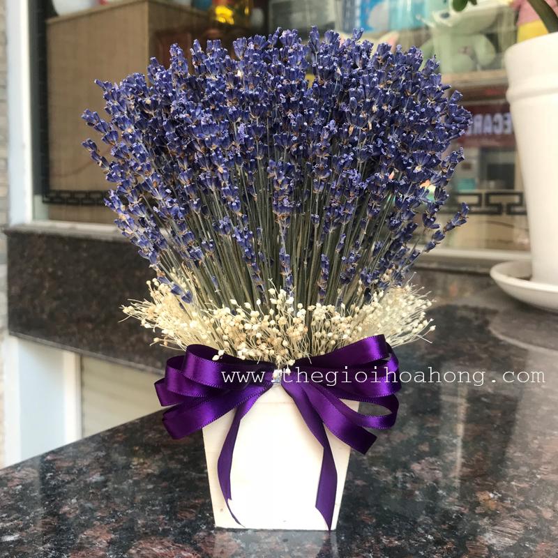Hộp hoa oải hương - lavender khô L0053