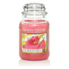 Nến thơm Yankee Candle Pink Dragon Fruit