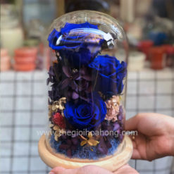 Glass Dome hoa hồng xanh - Love Magic