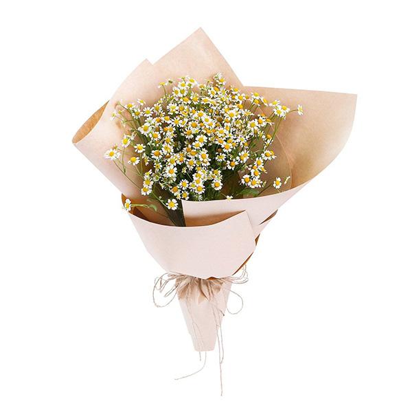 Bó hoa cúc Tana - Say Đắm