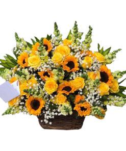 Giỏ hoa tươi - Phú Quý