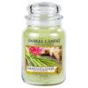 Nến Hũ Lemongrass & Ginger Yankee Candle