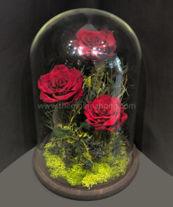 Hoa hồng đỏ vĩnh cửu Love Paradise - RED01