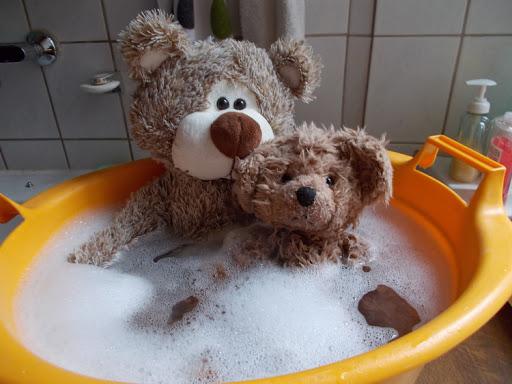 Cách Giặt Gấu Bông Bằng Máy Giặt Và Bằng Tay ở Nhà - Thegioihoahong.com
