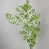 Preserved ruscus bunch - Lá chanh ý Xanh bạc hà