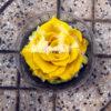 Hoa hồng vĩnh cửu SWEET – YEL02